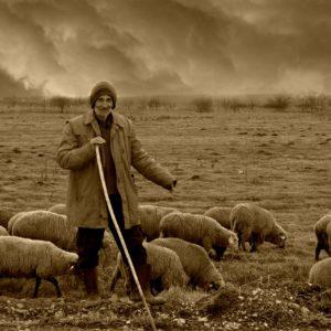 Jesus, our Shepherd