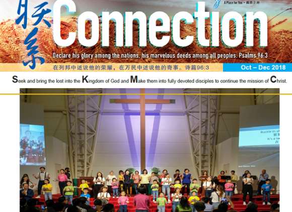 Issue 7 (Oct-Dec 18)